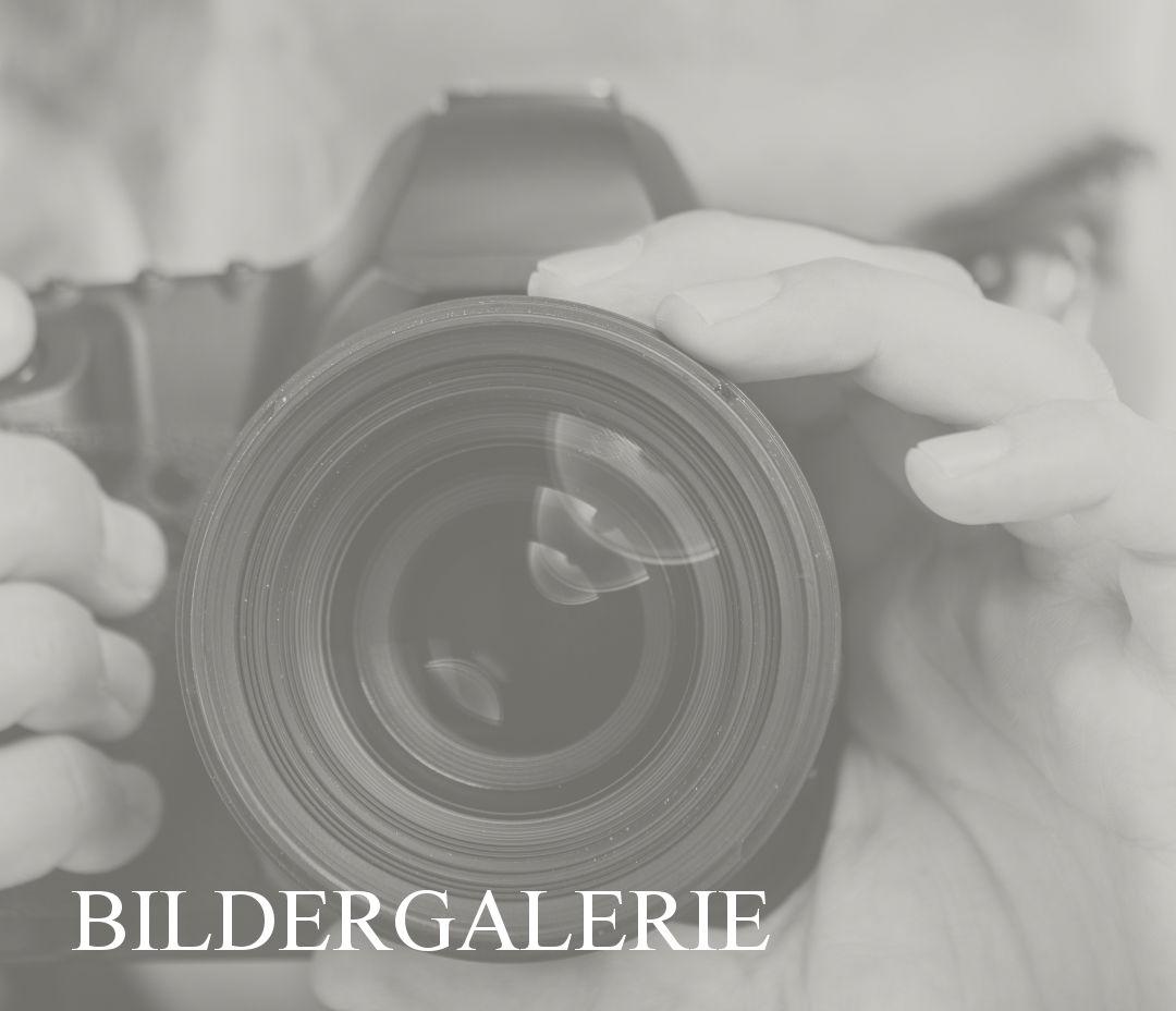 Bildergalerie Link